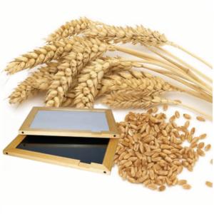 Прочие принадлежности зерновой лаборатории