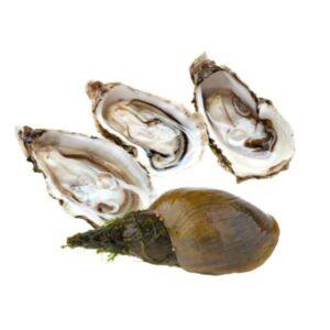 ИФА тесты для морепродуктов